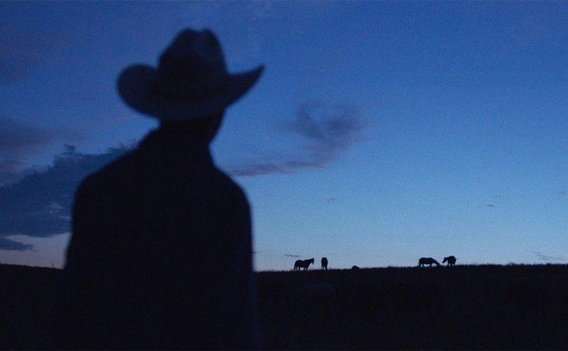 les chevaux (2)